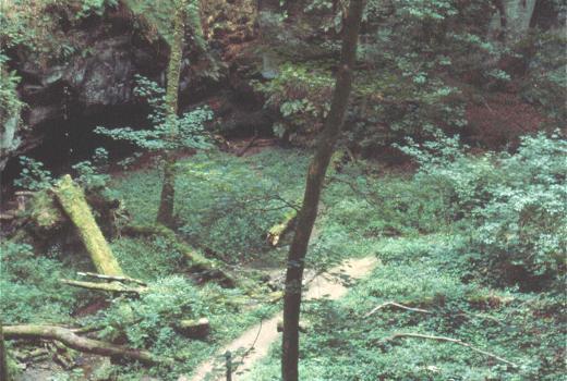 "Tourist trail in the valley ""Aesbech"" near Berdorf"