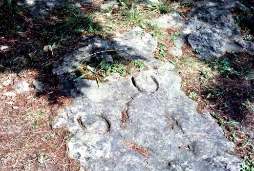 Horseshoe marks. Unknown period. Marienthal 'Reiterlä'