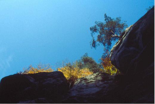 """Perekop"" an impressive sandstone outcrop near Berdorf"
