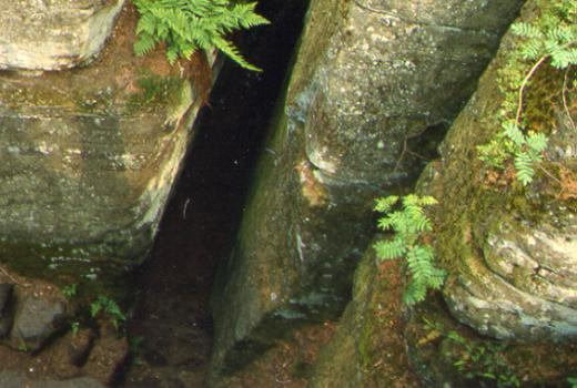Narrow crevices are particular to the Petite-Suisse area