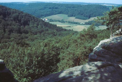 """View from Berdorf over the valley of the """"Ernz Noire"""""""