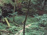 Chemin touristique dans la vallée de l'Aesbech près de Berdorf - © 1994 by Yves Krippel