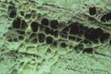 Effects of erosion on vertical sandstone structures. Berdorf 'Zickzackschloeff' - © 7-2004 by Marc Heinen